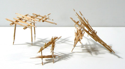 Liz Sweibel splinter
