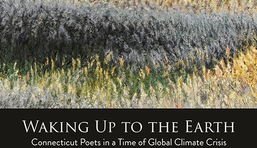 "A flowery field with text ""Waking Up To The Earth"""