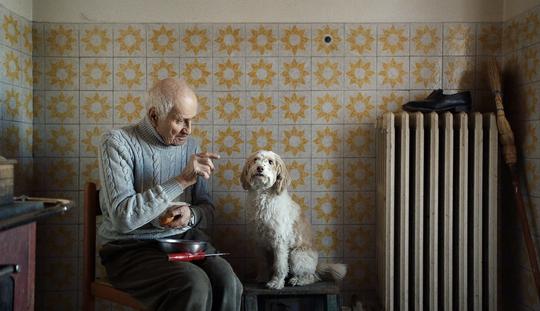 An older man and a dog sitting together in a kitchen, from The Truffle Hunters